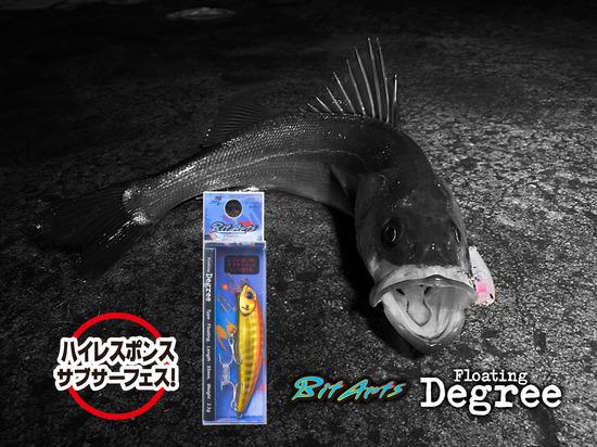 f_degree_image.jpg