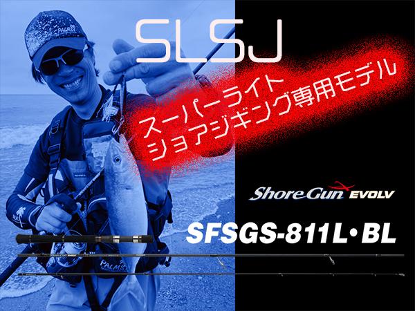 SLSJ専用モデル 811L